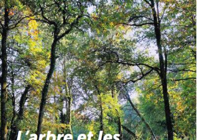 Forêts urbaines de demain